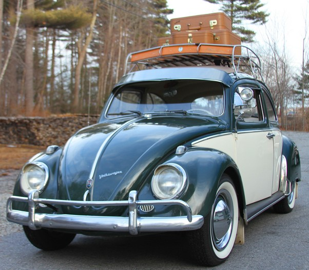 Volkswagen Bug For Sale: 1961 Vw Beetle For Sale Bug Volkswagen